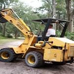 tree-removal-jacksonville-fl